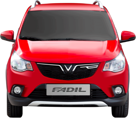 Fadil-front